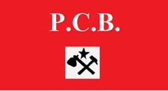pcb1_thumb.png